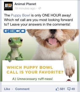 A screenshot of GIECO and Animal Planet engaging social media users during Puppy Bowl IX.